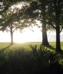 cropped-fairhope-mobile-bay.jpg